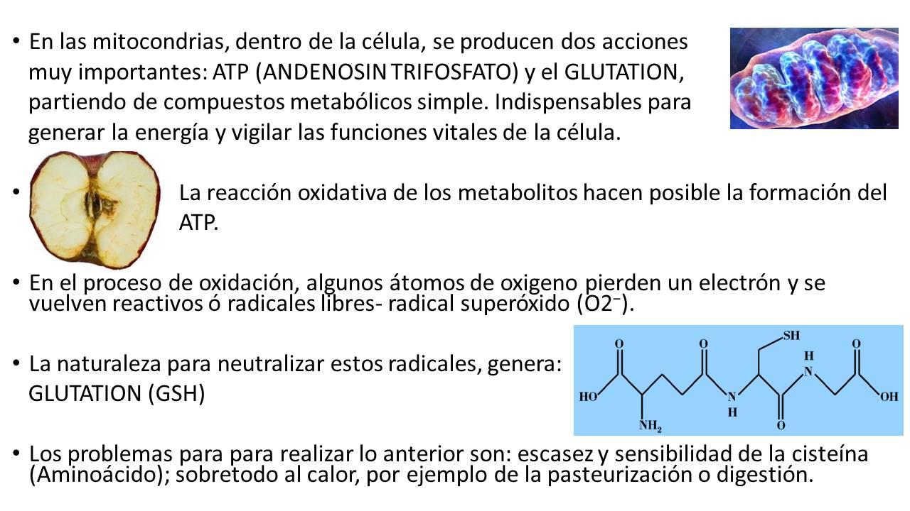 imagen de productos immunotec